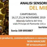 A Campobasso il Corso di Introduzione all'Analisi Sensoriale del Miele